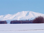 Mt  Shari-dake and Snowy Field