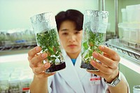 Female scientist holding plants in a laboratory, Tochigi Prefecture, Honshu, Japan
