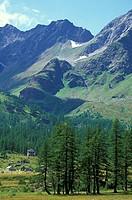 park view, alpe veglia park, italy