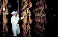 italy, langhirano, parma ham, consorzio del prosciutto di parma