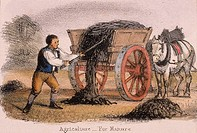 The manure cart  From ´Graphic Illustrations of Animals and Their Utility to Man´, c1850