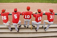 Baseball players lined up on the dugout fence