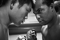 Mixed Martial Arts Fighters Staring each other down (thumbnail)