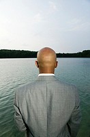Businessman facing lake, rear view