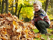 Boy 3-4 crouching by leaves in woodland, portrait