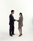 Lifestyle, Business, Executives, Couple, Handshake,