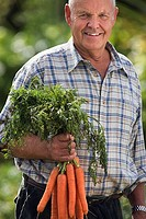 Senior man holding bunch of carrots in vegetable garden, smiling, front view, portrait