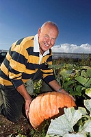 Senior man kneeling beside large pumpkin in vegetable garden, smiling, side view, portrait