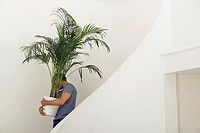 Man moving house, carrying large pot plant down staircase, face obscured, profile