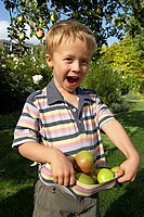 Boy 3-5 standing beneath apple tree in garden, holding apples in t-shirt, smiling, portrait