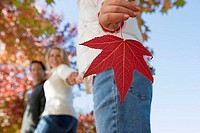 Family walking in park in autumn, focus on girl 7-9 holding red maple leaf in foreground, side view