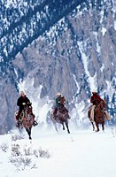 Family Horseback Riding in the Snow