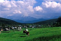 Poland, near Zakopane