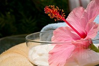 Spa elements, glass bowl filled with white cream, garnished with pink hibiscus