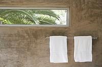 Palm trees glimpsed through a bathroom window