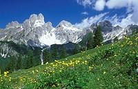 Bischofsmutze, Dachstein, mountain, range, Filzmoos, Pongau, Austria, Dachstein, group,
