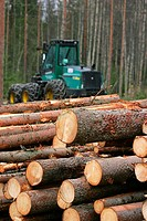 Timber harvesting  Outokumpu, Finland