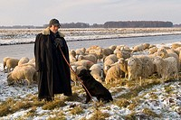 Shepherd, with, flock, dike, of, river, Hunte, Lower, Saxony, Germany,