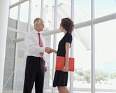 Businesswoman with document shaking hands with businessman