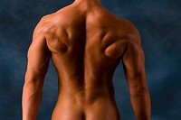 Muscular man flexing back, arm, and shoulder muscles, rear view
