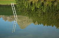 Ladder emerging from water with trees (thumbnail)