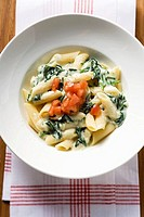 Rigatoni with spinach and cream sauce and diced tomato