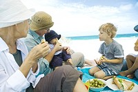 Grandparents and grandchildren having picnic on beach