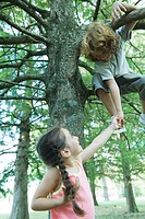 Boy in tree holding hands with sister standing below