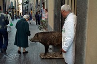 Rear view of a woman looking at a wild boar statue, Orvieto, Umbria, Italy