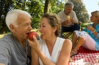 Elderly couples enjoying a picnic