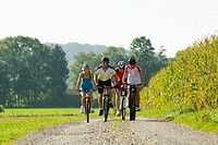 Four friends cycling down the road