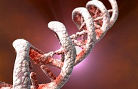 DNA structure (thumbnail)