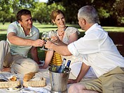 People having wine at a park