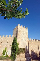 Alcudia's walls and tree, Majorca, Spain