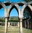 Cloister of San Juan de Duero near Soria. Castilla-León, Spain