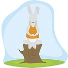 Rabbit doing meditation on a tree stump