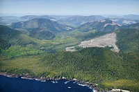 West Coast, Vancouver Island, British Columbia, Canada