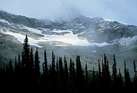 Mountain ridge with cloud cover and snow patched, Jasper National Park