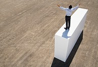 Businessman standing on wall with arms up