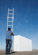Man with ladder approaching wall outdoors