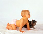 Baby and domestic cat