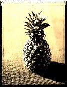 Close_up of pineapple