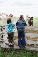 Girls on fence looking at horse