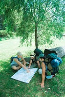 Three hikers studying map