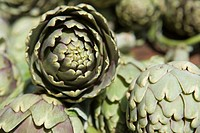 Artichokes, close-up
