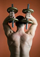 Man lifting dumbbells above head, rear view