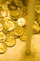 Euro coins under a running tap of water