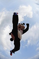 Panda Jumping over a Hurdle