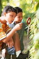 Two Boys Examining Plant with Magnifying Glass