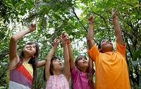 Hispanic children pointing up in woods